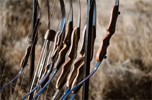 Southwest Archery Tigershark Takedown Recurve Bow Review