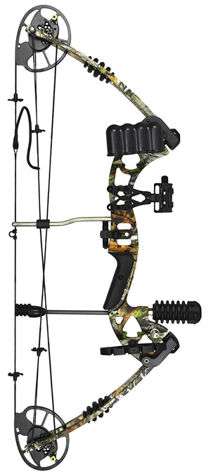 types of bows compound bow