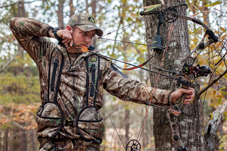 choose tree stand harness